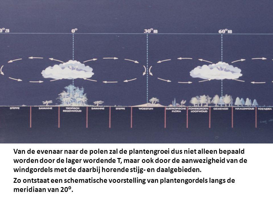 Van de evenaar naar de polen zal de plantengroei dus niet alleen bepaald worden door de lager wordende T, maar ook door de aanwezigheid van de windgor