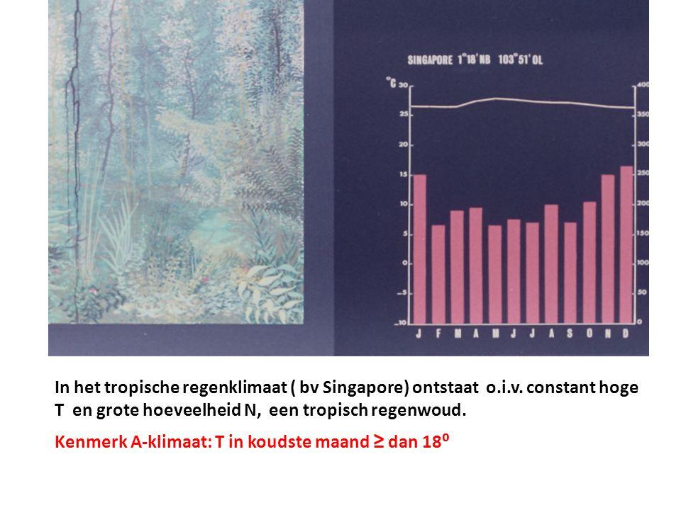 In het tropische regenklimaat ( bv Singapore) ontstaat o.i.v. constant hoge T en grote hoeveelheid N, een tropisch regenwoud. Kenmerk A-klimaat: T in