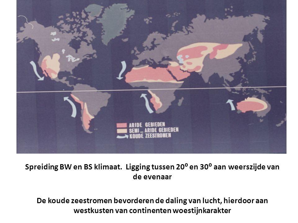 Spreiding BW en BS klimaat. Ligging tussen 20⁰ en 30⁰ aan weerszijde van de evenaar De koude zeestromen bevorderen de daling van lucht, hierdoor aan w