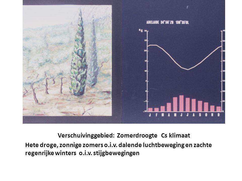 Verschuivinggebied: Zomerdroogte Cs klimaat Hete droge, zonnige zomers o.i.v. dalende luchtbeweging en zachte regenrijke winters o.i.v. stijgbeweginge