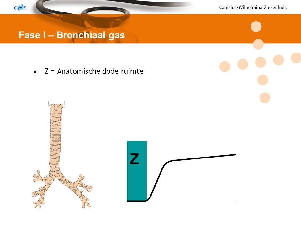 Z = Anatomische dode ruimte Fase I – Bronchiaal gas Z
