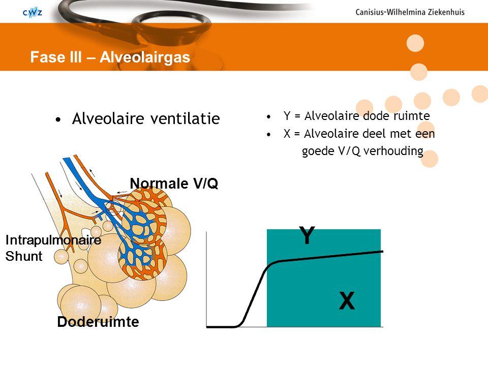 Alveolaire ventilatie Y = Alveolaire dode ruimte X = Alveolaire deel met een goede V/Q verhouding Fase III – Alveolairgas Y X Doderuimte Normale V/Q I