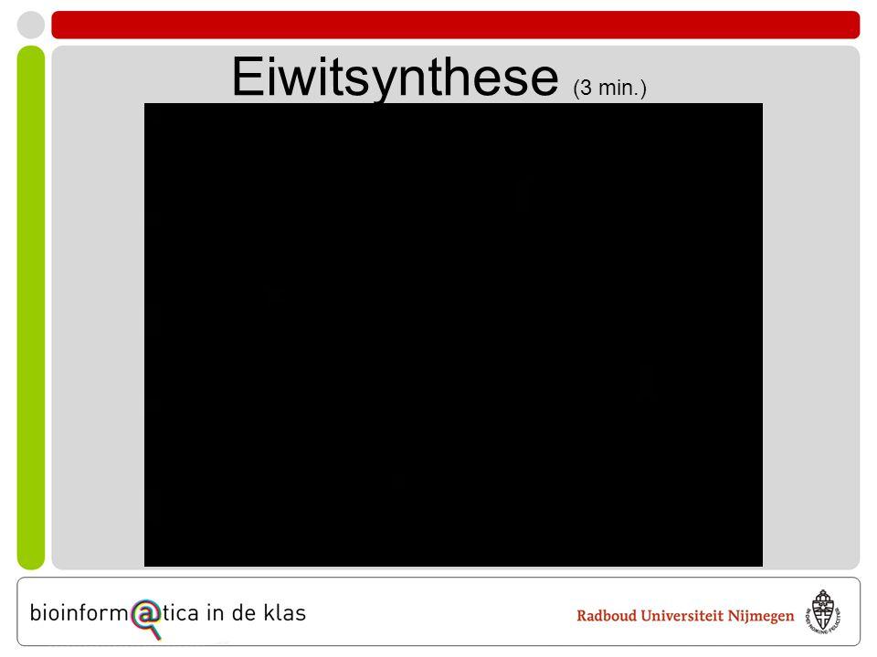 Eiwitsynthese (3 min.)