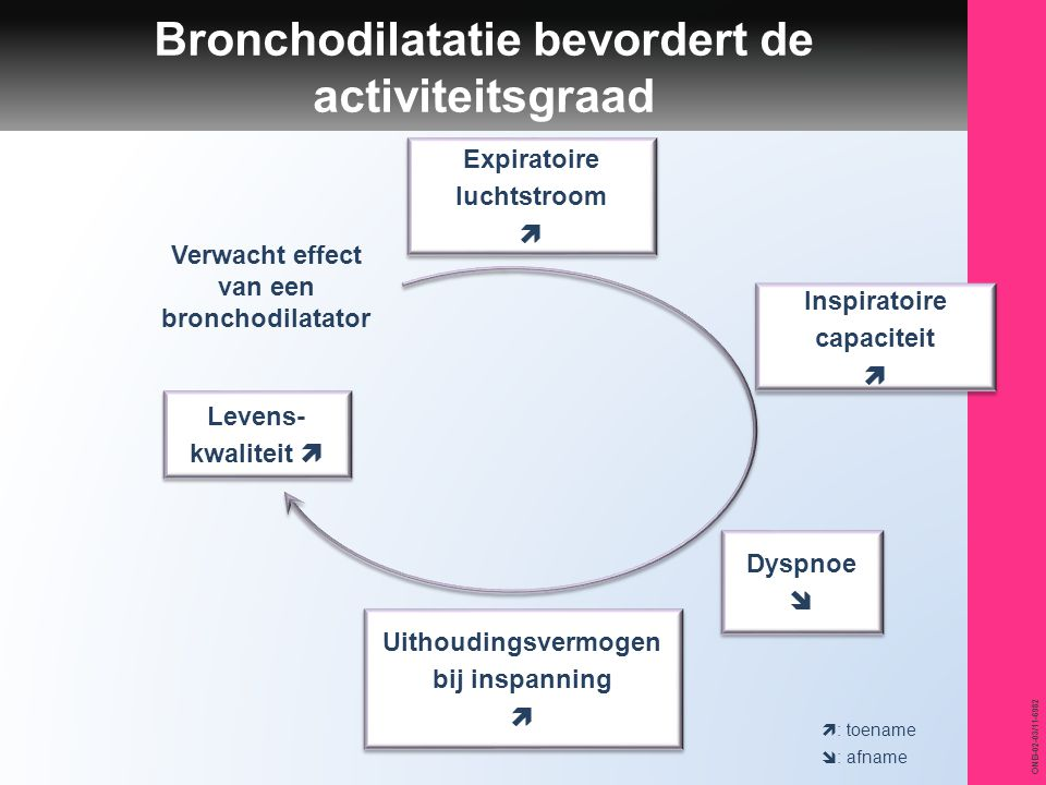 ONB-02-03/11-6982 Bronchodilatatie bevordert de activiteitsgraad  : toename  : afname Uithoudingsvermogen bij inspanning  Uithoudingsvermogen bij i