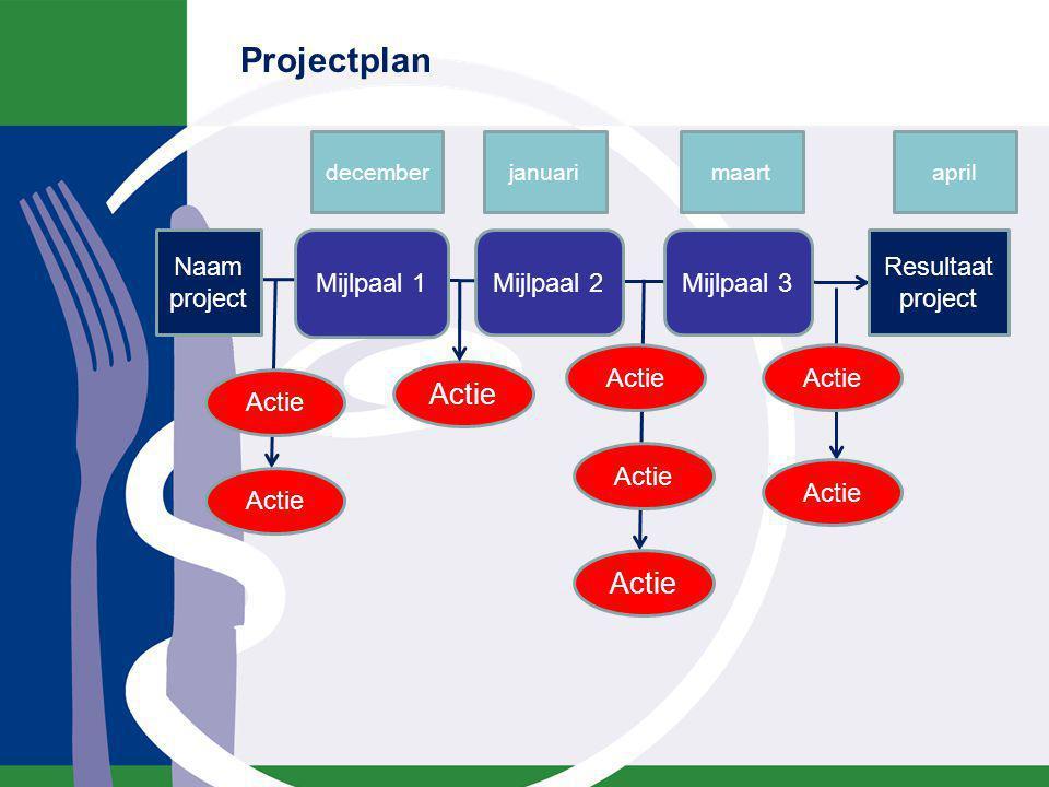 Projectplan Naam project Mijlpaal 2Mijlpaal 3 Resultaat project Actie Mijlpaal 1 decemberjanuarimaartapril