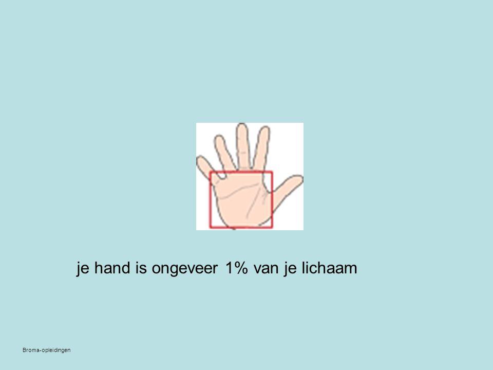 je hand is ongeveer 1% van je lichaam