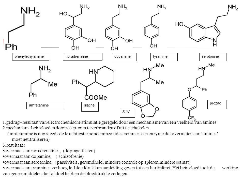 phenylethylamine amfetaminerilatine XTC noradrenalinedopamineserotonine prozac Phenylethylamine tyramine 1.gedrag=resultaat van electrochemische stimu