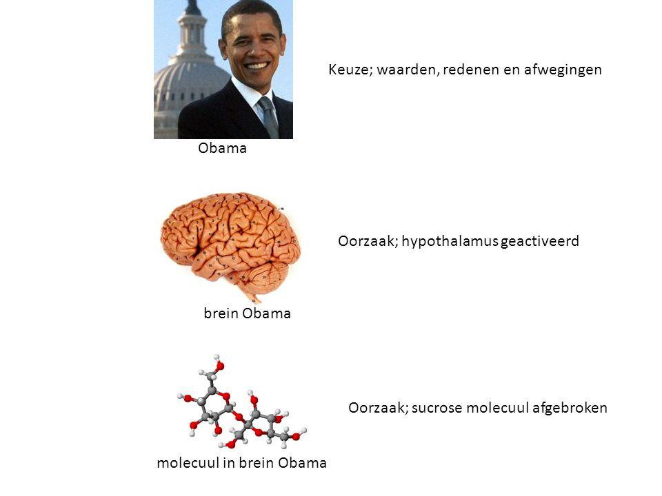 Keuze; waarden, redenen en afwegingen Oorzaak; hypothalamus geactiveerd Oorzaak; sucrose molecuul afgebroken Obama brein Obama molecuul in brein Obama