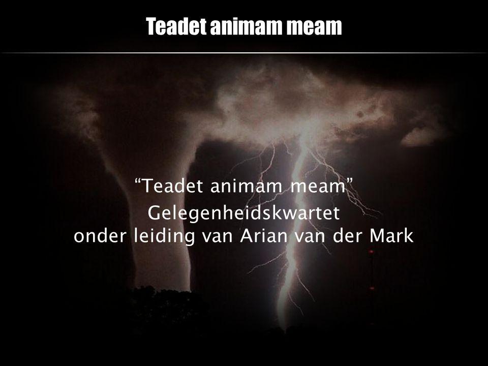 "Teadet animam meam ""Teadet animam meam"" Gelegenheidskwartet onder leiding van Arian van der Mark"