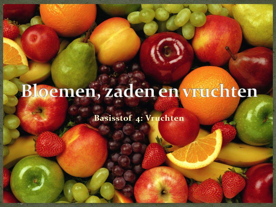 Basisstof 4: Vruchten