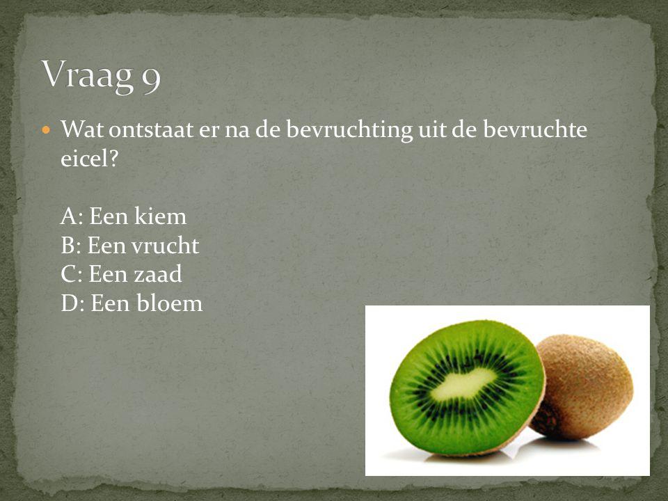 Wat ontstaat er na de bevruchting uit de bevruchte eicel? A: Een kiem B: Een vrucht C: Een zaad D: Een bloem
