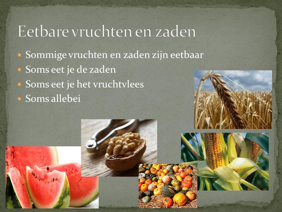 Sommige vruchten en zaden zijn eetbaar Soms eet je de zaden Soms eet je het vruchtvlees Soms allebei