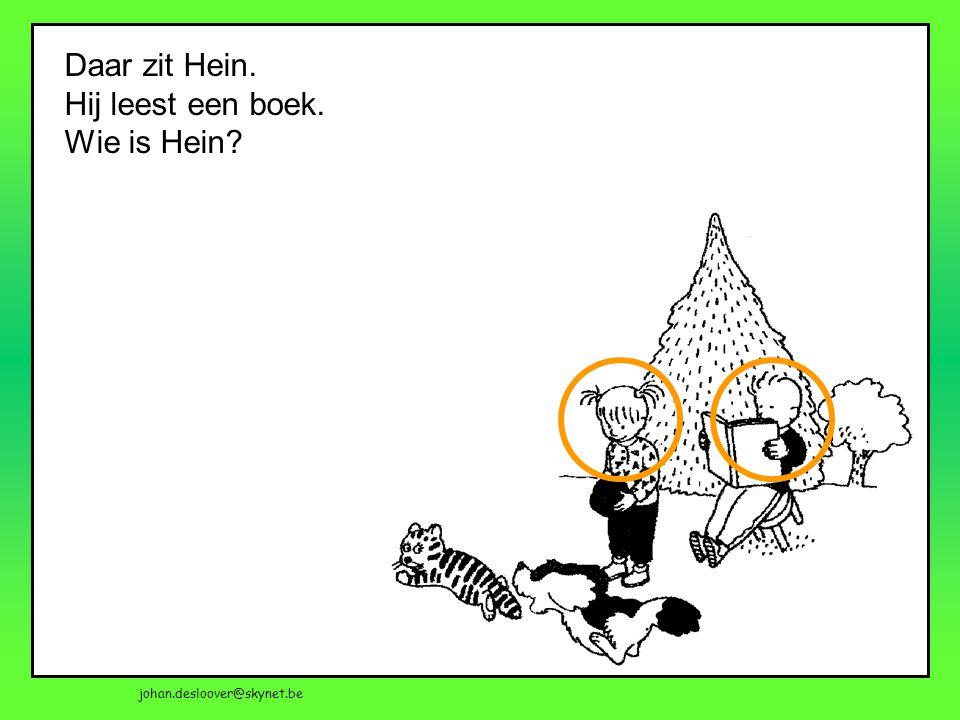 Daar zit Hein. Hij leest een boek. Wie is Hein?