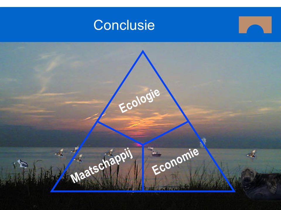 Conclusie Ecologie Economie Maatschappij