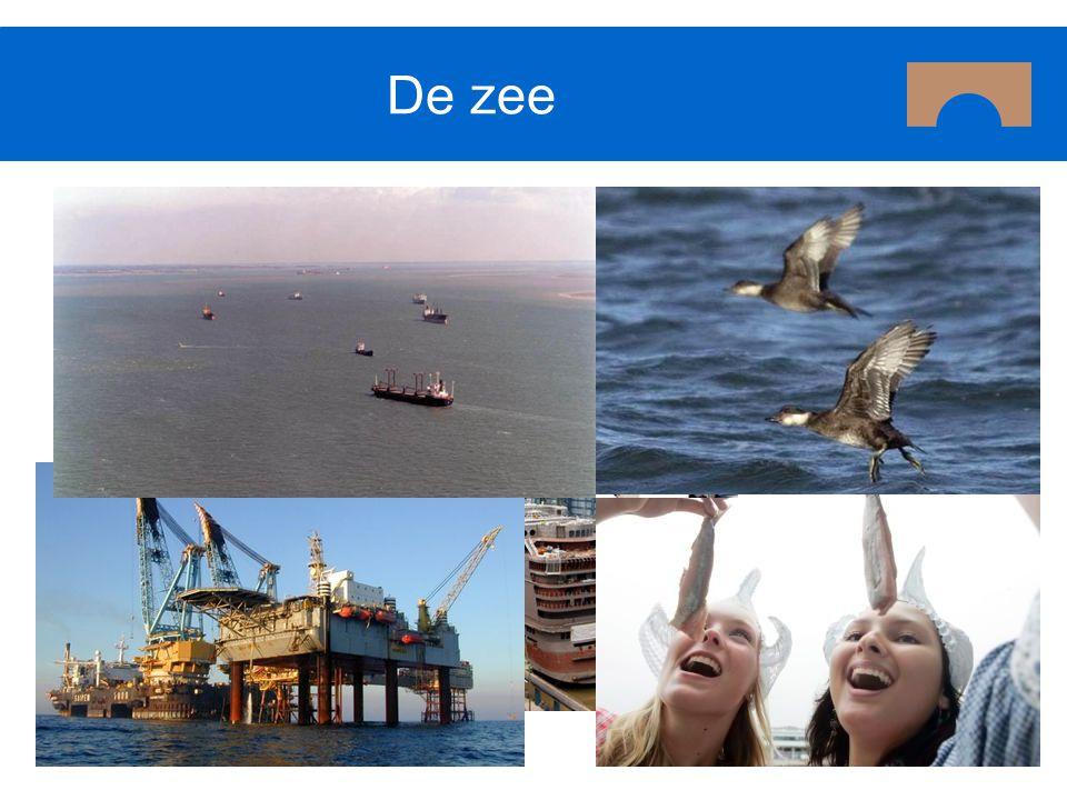 Reacties Verkeer en Waterstaat Hoofdlijn reacties Noodzaak voor samenhangende benadering wordt onderschreven VenW verwijst echter naar Kaderrichtlijn Mariene Strategie.