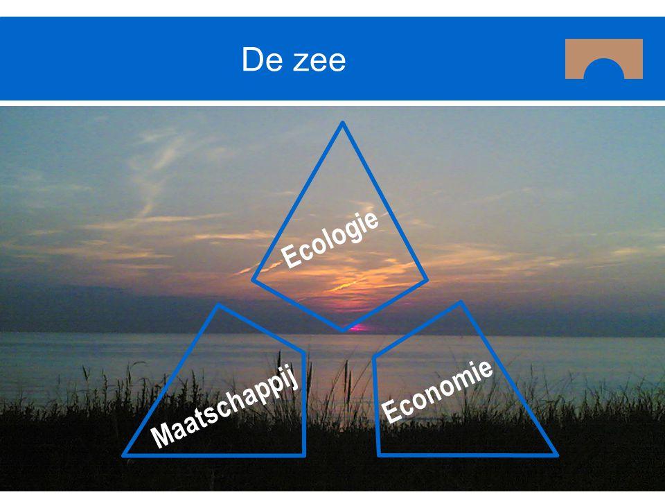 Olielozingen Luchtverontreiniging Constante druk op het zee systeem Ecologie Economie Maatschappij Visserij Toxische stoffen Scheepsafval Enzovoorts…..