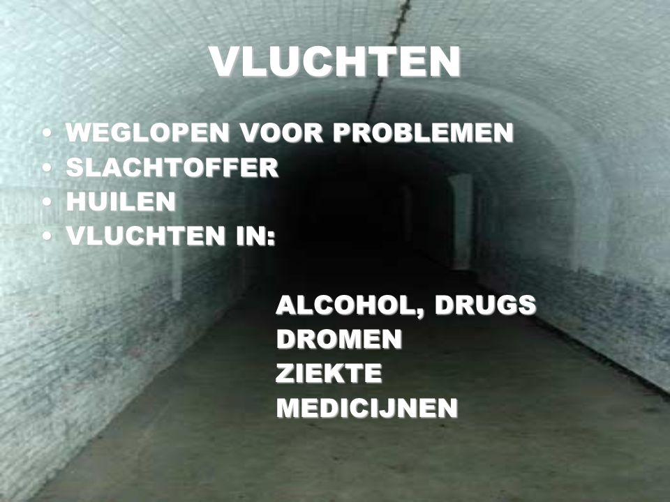 VLUCHTEN WEGLOPEN VOOR PROBLEMENWEGLOPEN VOOR PROBLEMEN SLACHTOFFERSLACHTOFFER HUILENHUILEN VLUCHTEN IN:VLUCHTEN IN: ALCOHOL, DRUGS ALCOHOL, DRUGS DRO