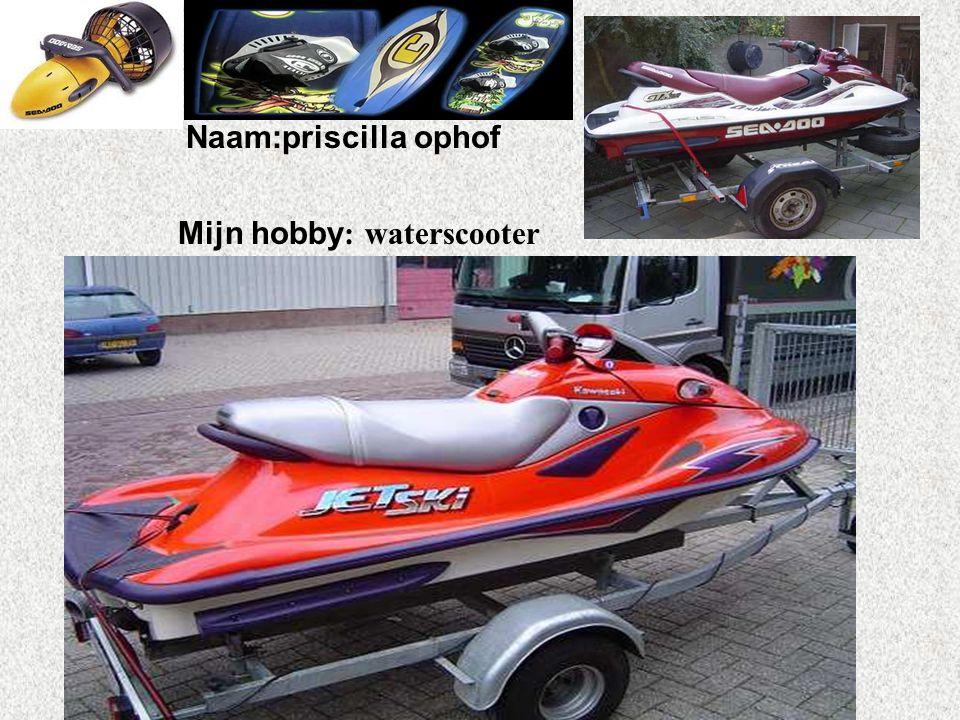 """Naam:priscilla ophof Mijn hobby : waterscooter Klik op """"Naam"""". Vul je naam in. Doe hetzelfde met """"hobby"""" Hier kun je een foto / tekening Invoegen"""