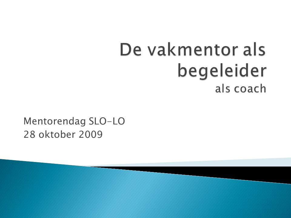 Mentorendag SLO-LO 28 oktober 2009