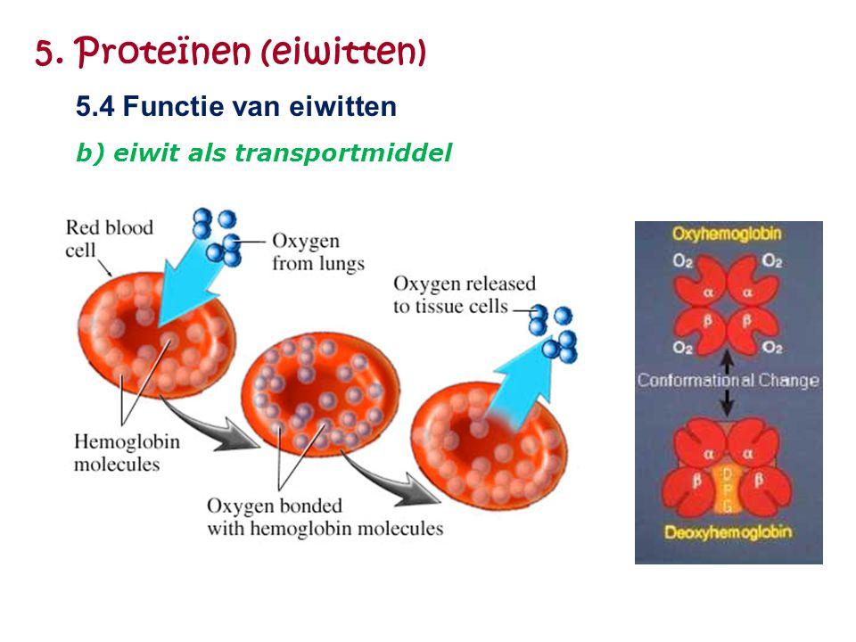 5. Proteïnen (eiwitten) 5.4 Functie van eiwitten b) eiwit als transportmiddel