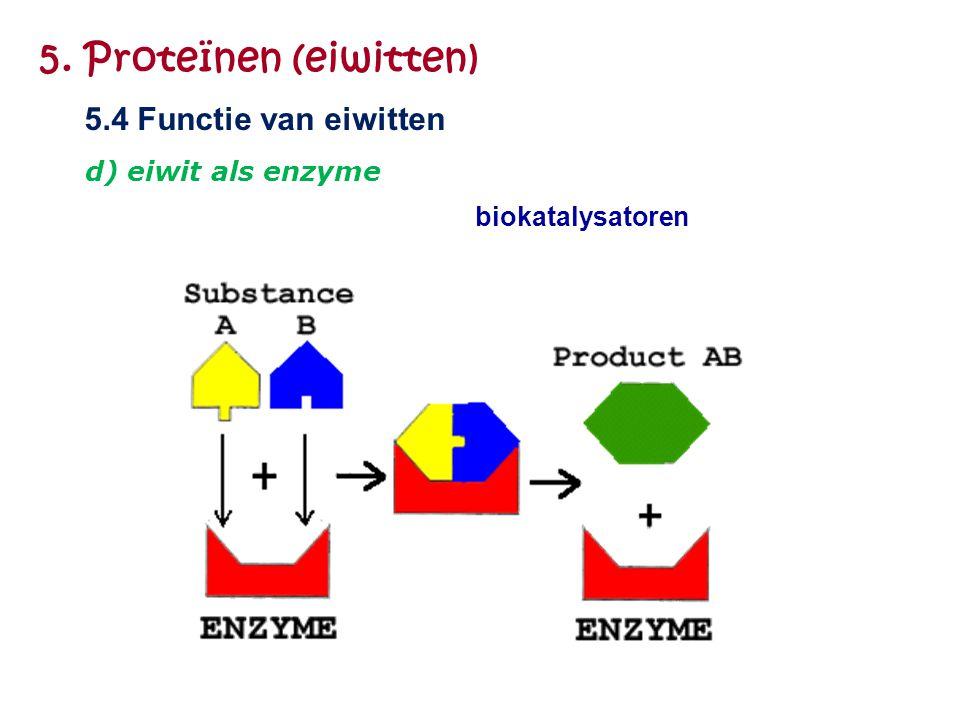 biokatalysatoren 5. Proteïnen (eiwitten) 5.4 Functie van eiwitten d) eiwit als enzyme