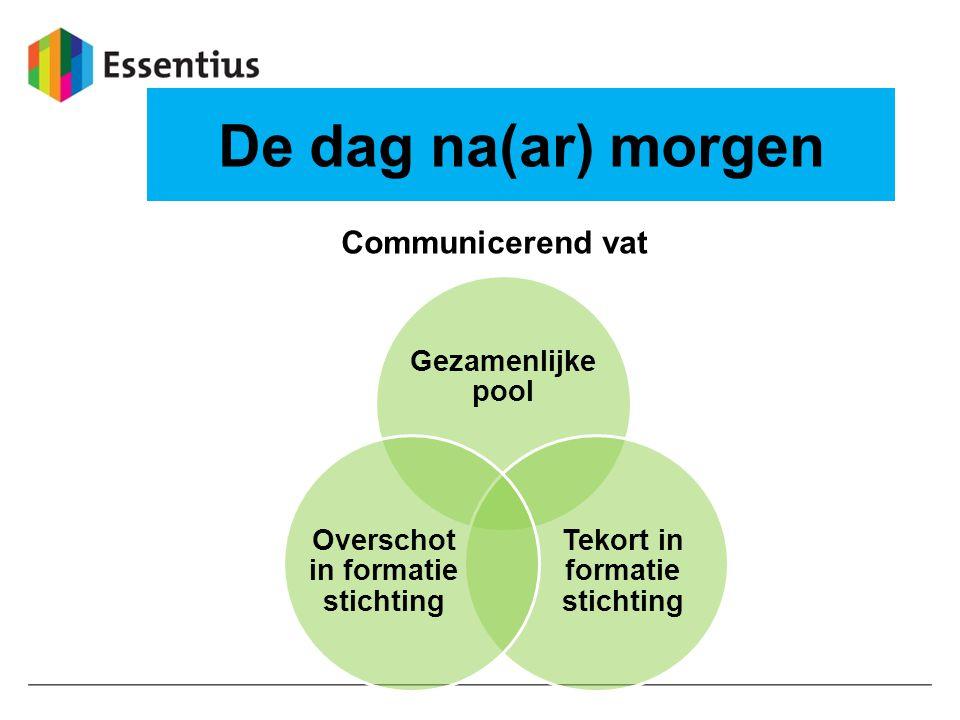 De dag na(ar) morgen Gezamenlijke pool Tekort in formatie stichting Overschot in formatie stichting Communicerend vat