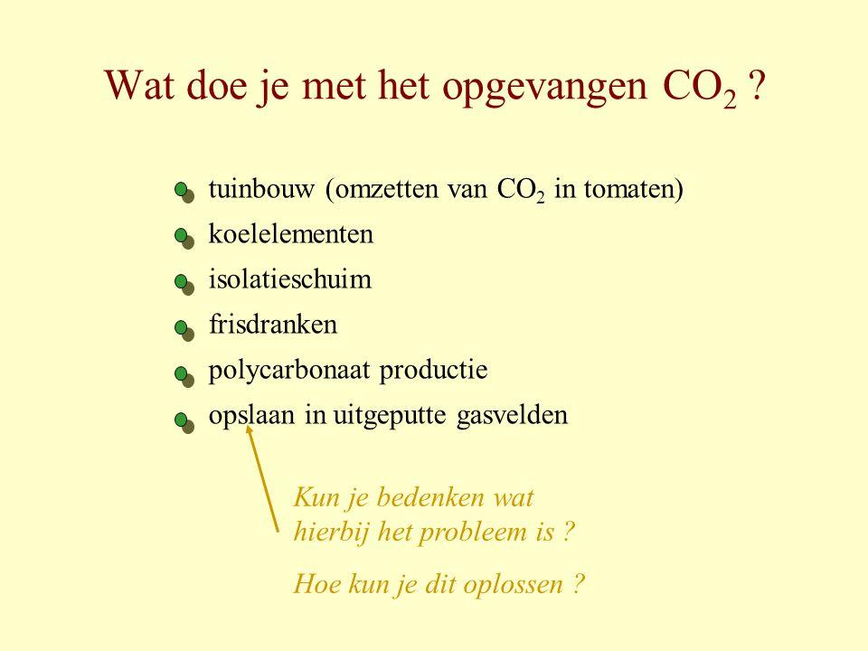 Wat doe je met het opgevangen CO 2 ? tuinbouw (omzetten van CO 2 in tomaten) koelelementen isolatieschuim frisdranken polycarbonaat productie opslaan