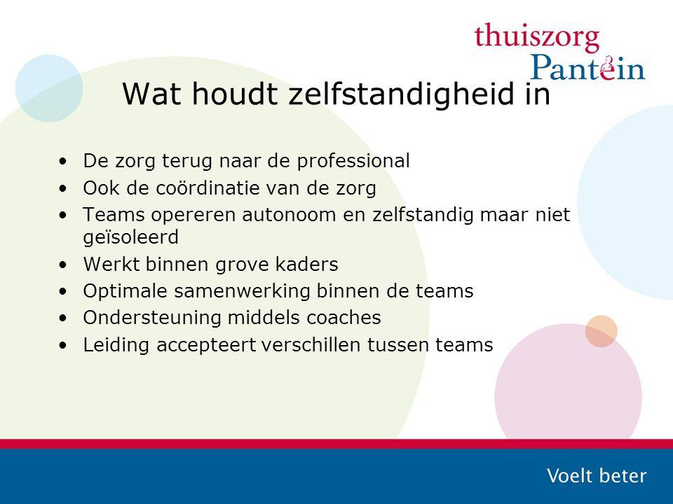 Wat houdt zelfstandigheid in De zorg terug naar de professional Ook de coördinatie van de zorg Teams opereren autonoom en zelfstandig maar niet geïsol
