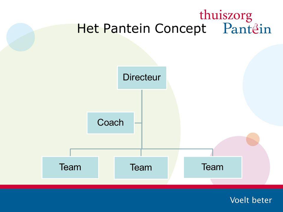 Het Pantein Concept Directeur Team Coach