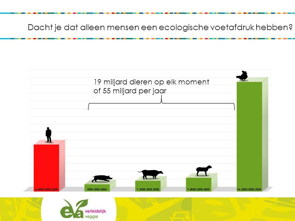 < Veeteelt is verantwoordelijk voor 18% van de broeikasgasuitstoot: methaan (CH4)  lachgas (N2O)  CO2 Milieucrisis: klimaatverandering