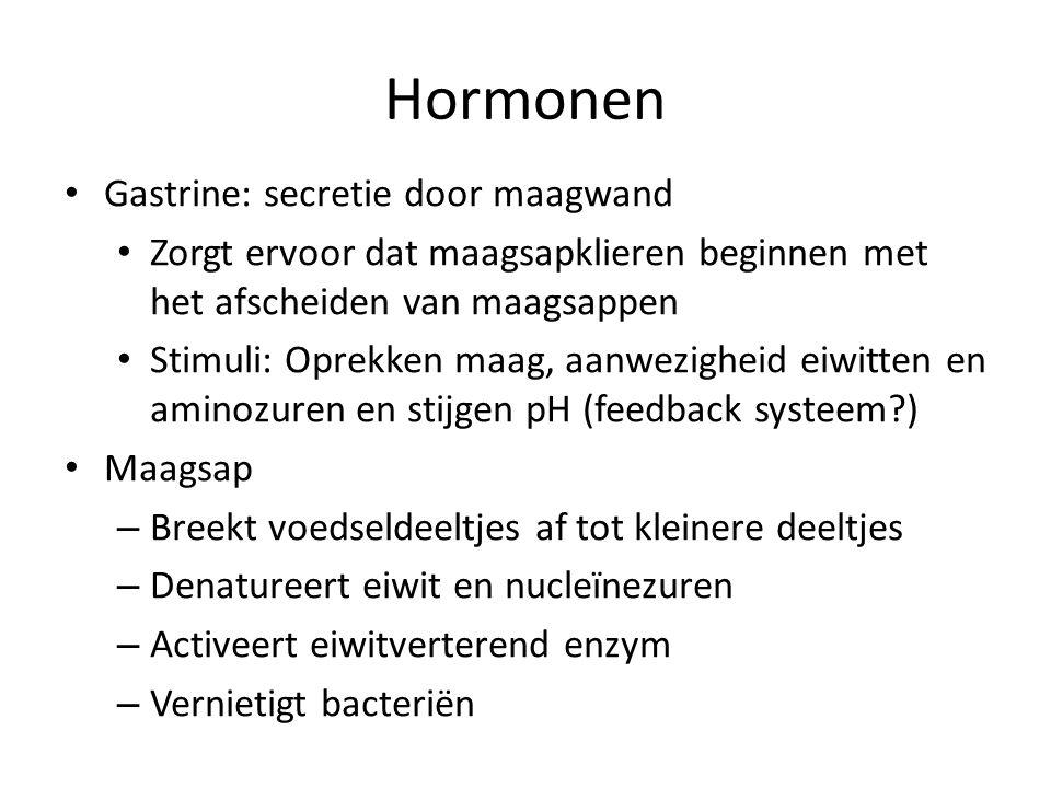 Hormonen Gastrine: secretie door maagwand Zorgt ervoor dat maagsapklieren beginnen met het afscheiden van maagsappen Stimuli: Oprekken maag, aanwezigh