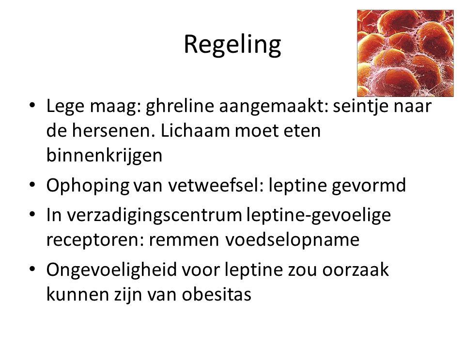 Regeling Lege maag: ghreline aangemaakt: seintje naar de hersenen. Lichaam moet eten binnenkrijgen Ophoping van vetweefsel: leptine gevormd In verzadi