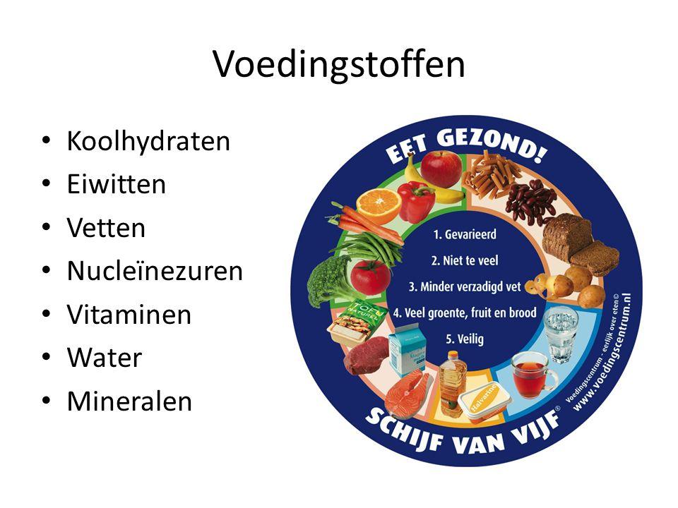 Voedingstoffen Koolhydraten Eiwitten Vetten Nucleïnezuren Vitaminen Water Mineralen
