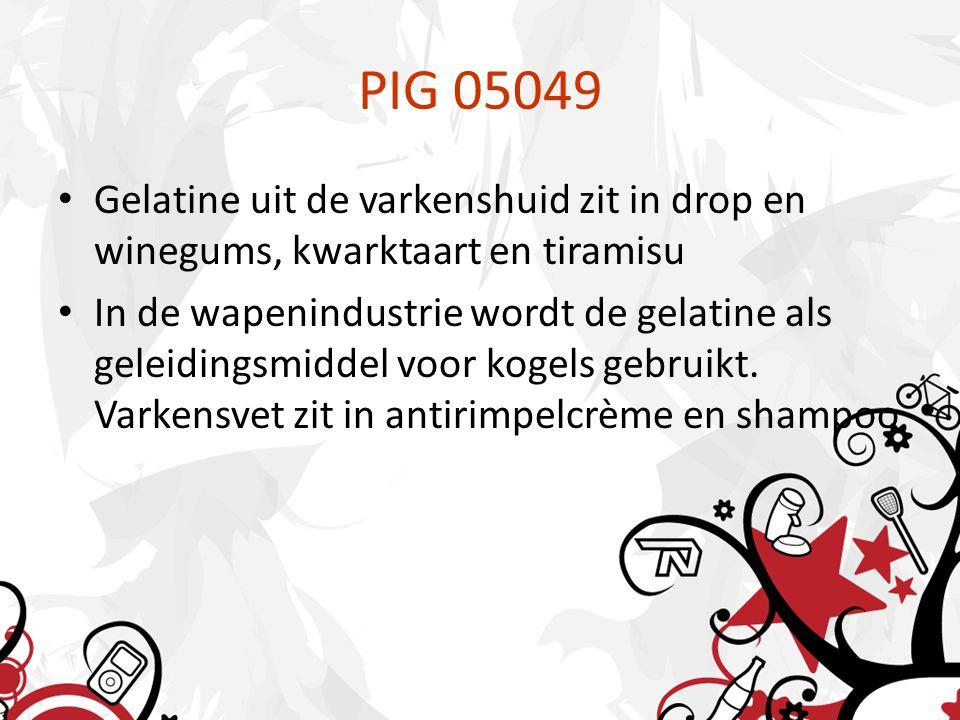PIG 05049 Gelatine uit de varkenshuid zit in drop en winegums, kwarktaart en tiramisu In de wapenindustrie wordt de gelatine als geleidingsmiddel voor kogels gebruikt.
