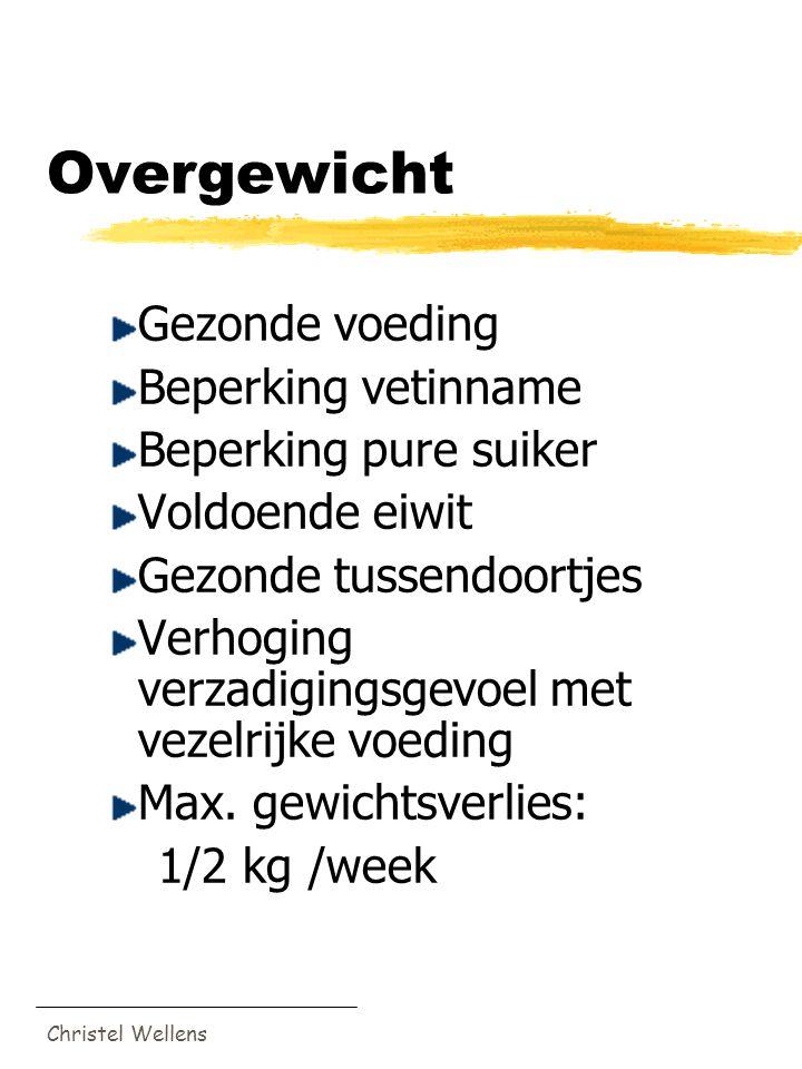 Christel Wellens Overgewicht Gezonde voeding Beperking vetinname Beperking pure suiker Voldoende eiwit Gezonde tussendoortjes Verhoging verzadigingsge