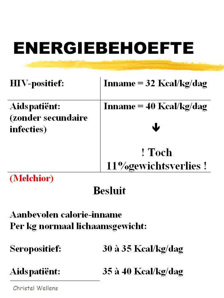 Christel Wellens ENERGIEBEHOEFTE
