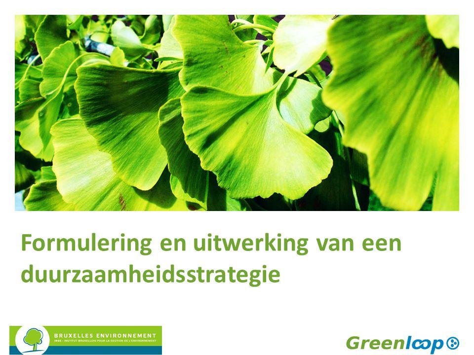 Formulering en uitwerking van een duurzaamheidsstrategie