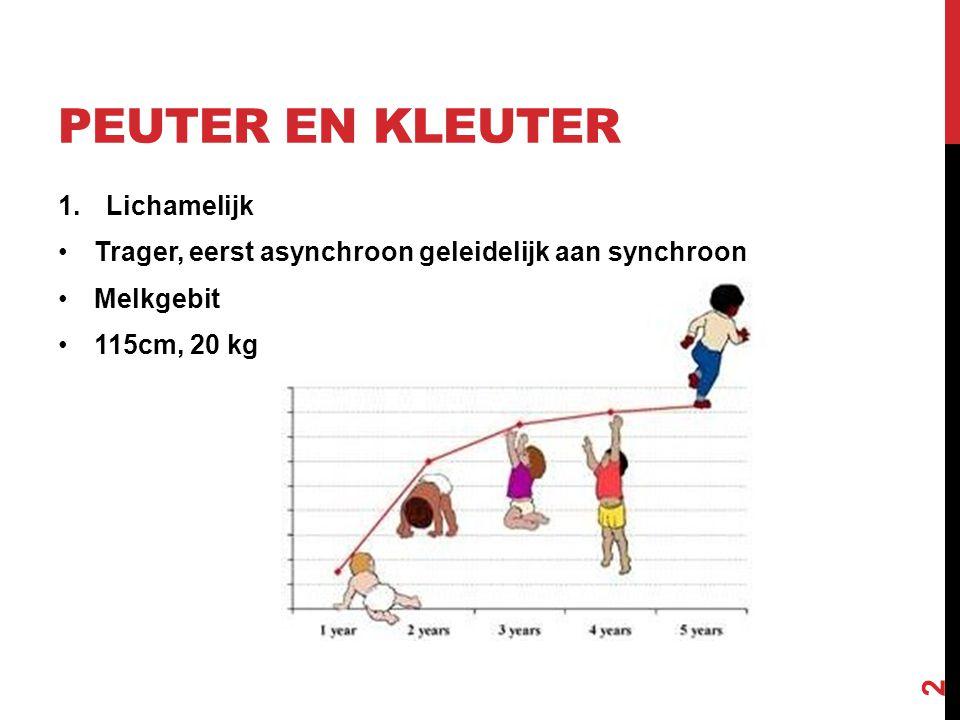 PEUTER EN KLEUTER 1.Lichamelijk Trager, eerst asynchroon geleidelijk aan synchroon Melkgebit 115cm, 20 kg 2