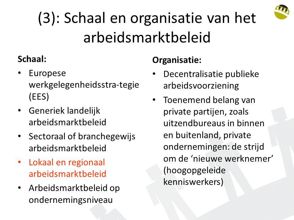 (3): Schaal en organisatie van het arbeidsmarktbeleid Schaal: Europese werkgelegenheidsstra-tegie (EES) Generiek landelijk arbeidsmarktbeleid Sectoraa