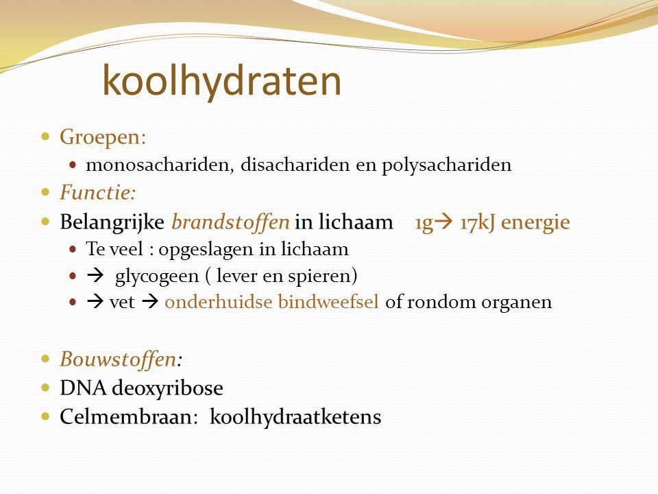 koolhydraten Groepen: monosachariden, disachariden en polysachariden Functie: Belangrijke brandstoffen in lichaam 1g  17kJ energie Te veel : opgeslag