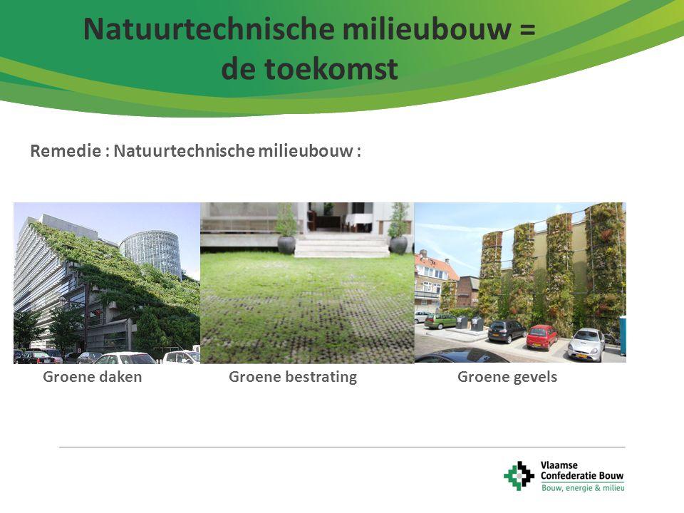 10 Remedie : Natuurtechnische milieubouw : Natuurtechnische milieubouw = de toekomst Groene daken Groene bestrating Groene gevels