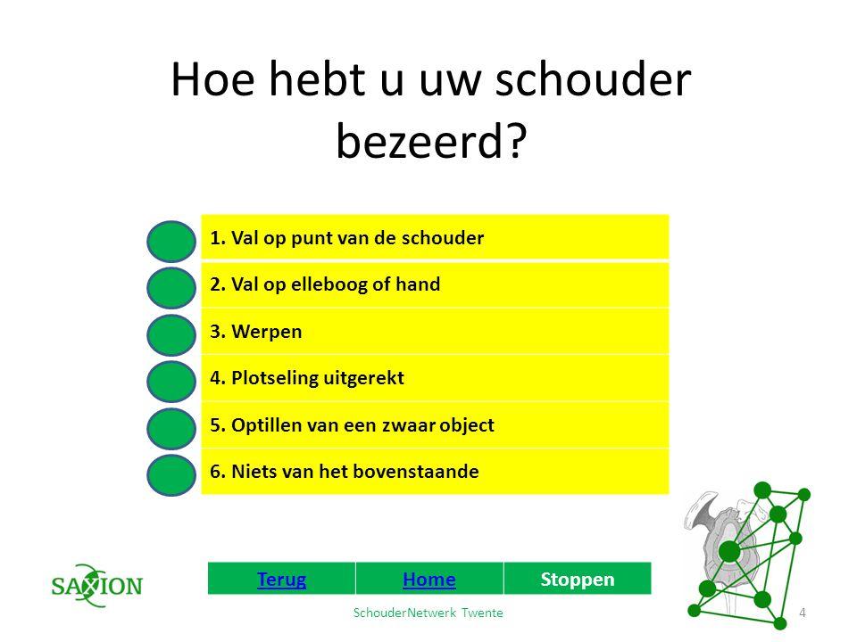 SchouderNetwerk Twente Waar zit de meeste pijn? TerugHomeStoppen 5 Geel Roze