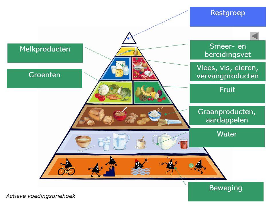 Actieve voedingsdriehoek Restgroep Smeer- en bereidingsvet Vlees, vis, eieren, vervangproducten Fruit Graanproducten, aardappelen Water Beweging Melkp