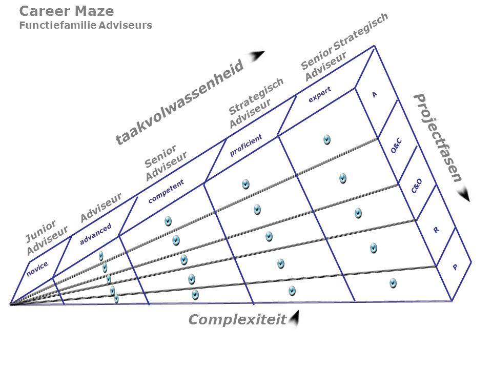 taakvolwassenheid Career Maze Functiefamilie Adviseurs Projectfasen Complexiteit Junior Adviseur Adviseur Senior Adviseur Strategisch Adviseur Senior