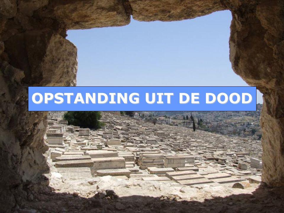 OPSTANDING UIT DE DOOD