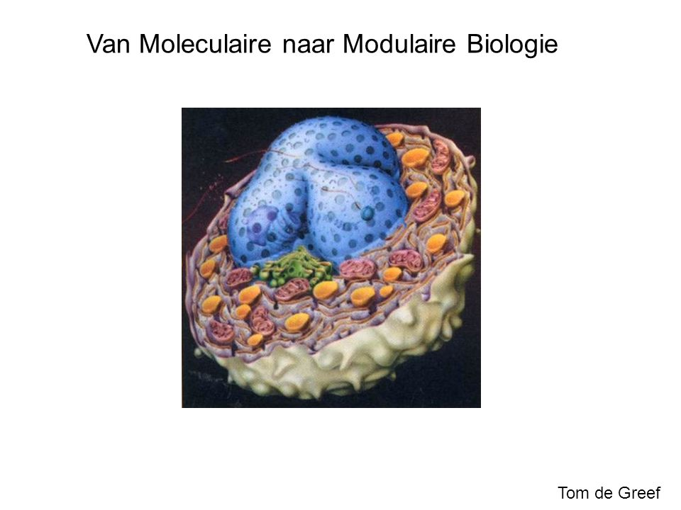 De levende cel als complex systeem (II) Adaptief: Cel past zich aan aan zijn omgeving Signalen  interactie moleculen Robuust: Regelsystemen in cel houden concentratie, pH en temperatuur constant.