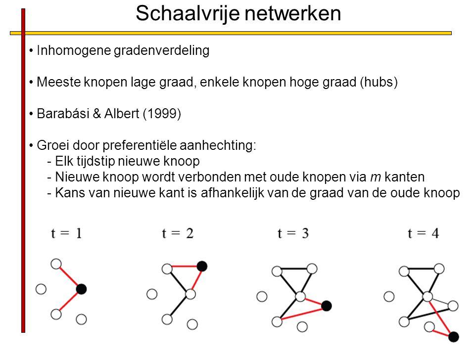 Schaalvrije netwerken Inhomogene gradenverdeling Meeste knopen lage graad, enkele knopen hoge graad (hubs) Barabási & Albert (1999) Groei door preferentiële aanhechting: - Elk tijdstip nieuwe knoop - Nieuwe knoop wordt verbonden met oude knopen via m kanten - Kans van nieuwe kant is afhankelijk van de graad van de oude knoop