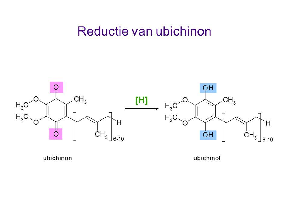 Reductie van ubichinon