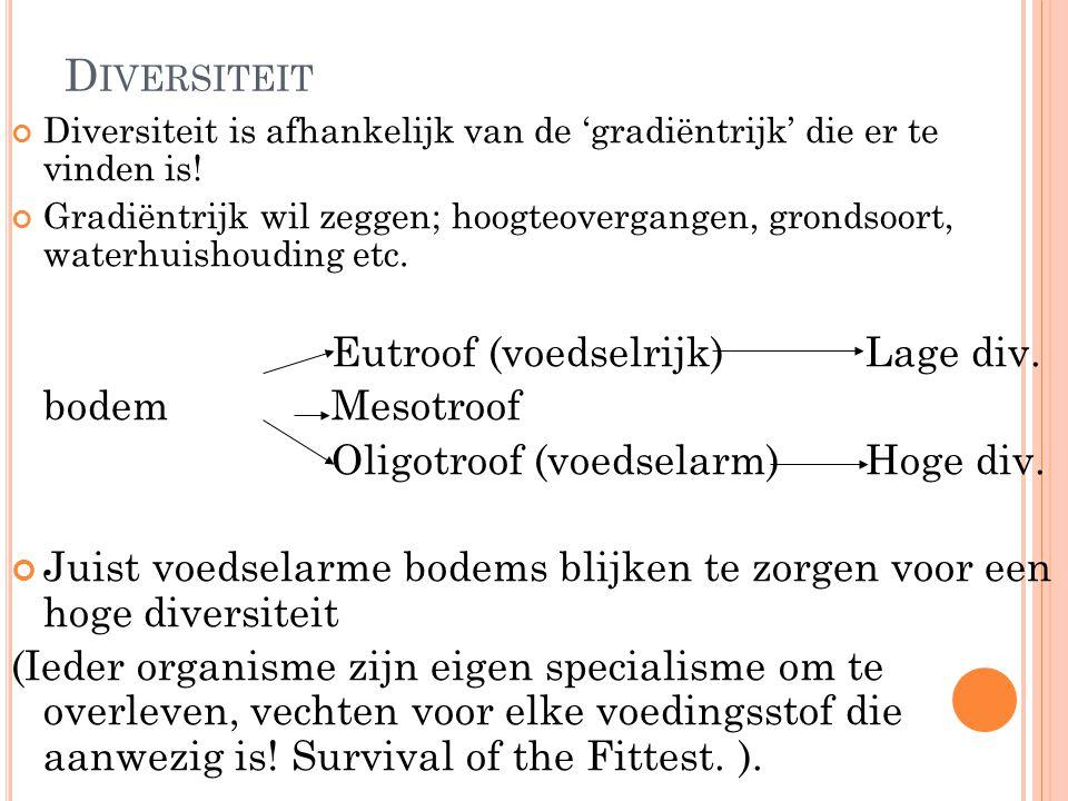 D IVERSITEIT Diversiteit is afhankelijk van de 'gradiëntrijk' die er te vinden is! Gradiëntrijk wil zeggen; hoogteovergangen, grondsoort, waterhuishou