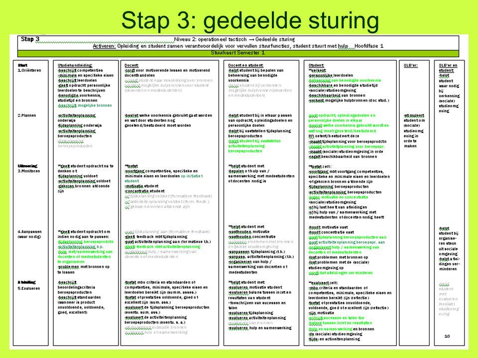 Stap 3: gedeelde sturing
